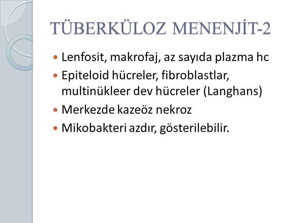 TÜBERKÜLOZ MENENJİT-2 Lenfosit, makrofaj, az sayıda plazma hc Epiteloid hücreler, fibroblastlar, multinükleer dev hücreler (Langhans) Merkezde kazeöz