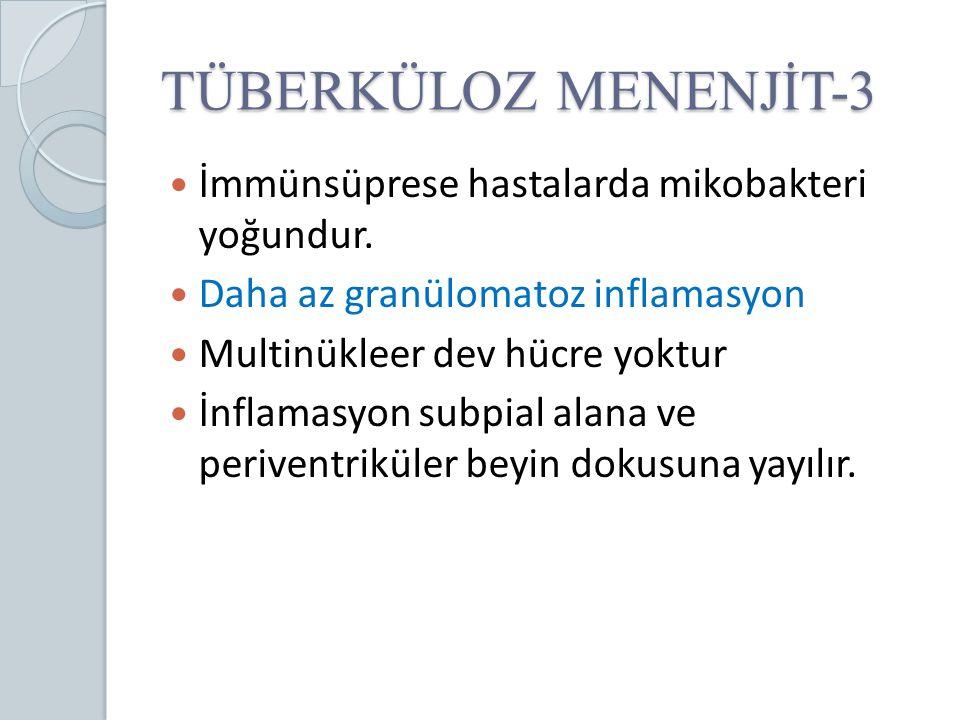 TÜBERKÜLOZ MENENJİT-3 İmmünsüprese hastalarda mikobakteri yoğundur. Daha az granülomatoz inflamasyon Multinükleer dev hücre yoktur İnflamasyon subpial
