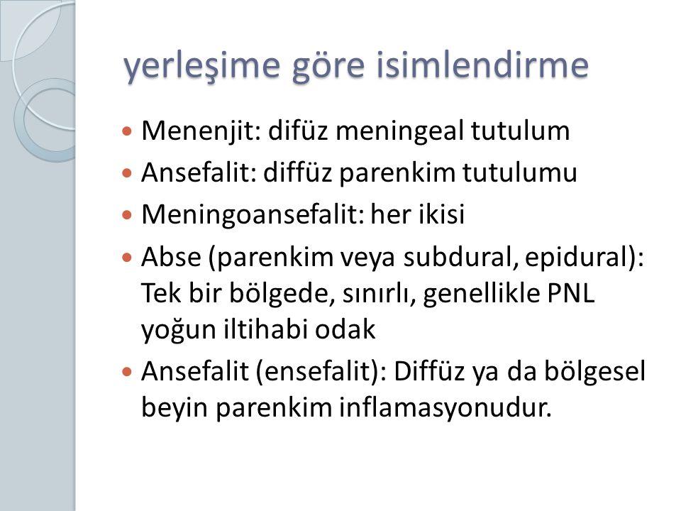 Parenkimin iltihabi hastalığına: ansefalit Abse: bir bölgede sınırlanmış, özellikle erken dönemde yoğun PNL içeren iltihap.
