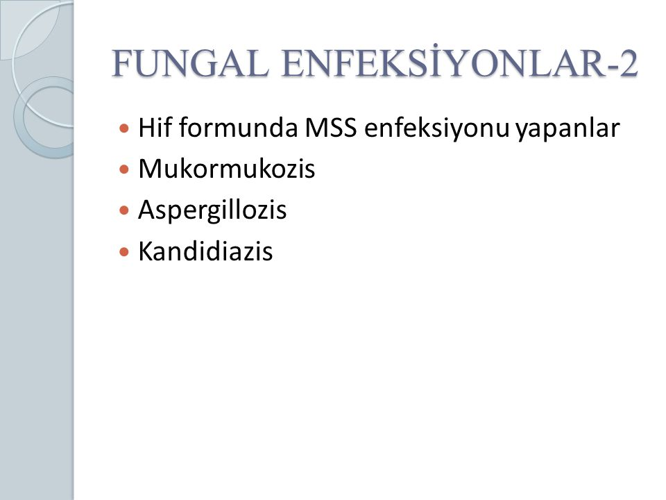 FUNGAL ENFEKSİYONLAR-2 Hif formunda MSS enfeksiyonu yapanlar Mukormukozis Aspergillozis Kandidiazis