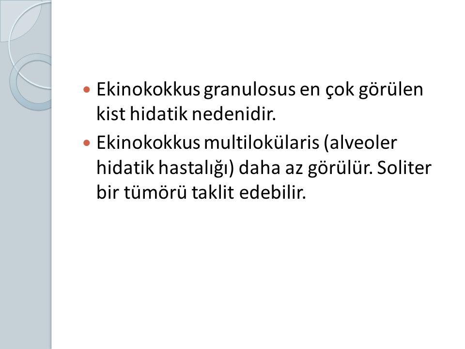 Ekinokokkus granulosus en çok görülen kist hidatik nedenidir. Ekinokokkus multilokülaris (alveoler hidatik hastalığı) daha az görülür. Soliter bir tüm