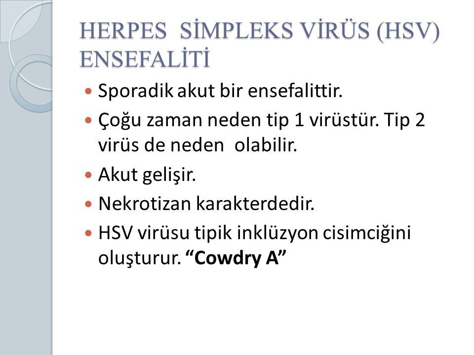 HERPES SİMPLEKS VİRÜS (HSV) ENSEFALİTİ Sporadik akut bir ensefalittir. Çoğu zaman neden tip 1 virüstür. Tip 2 virüs de neden olabilir. Akut gelişir. N