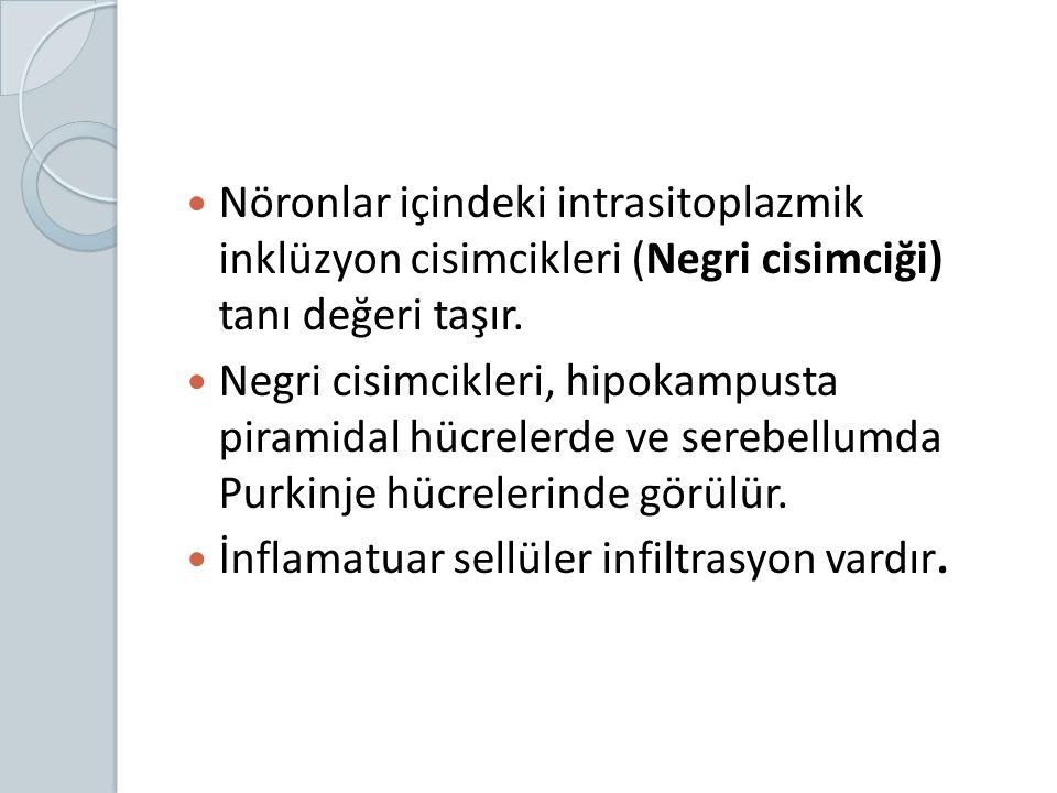 Nöronlar içindeki intrasitoplazmik inklüzyon cisimcikleri (Negri cisimciği) tanı değeri taşır. Negri cisimcikleri, hipokampusta piramidal hücrelerde v