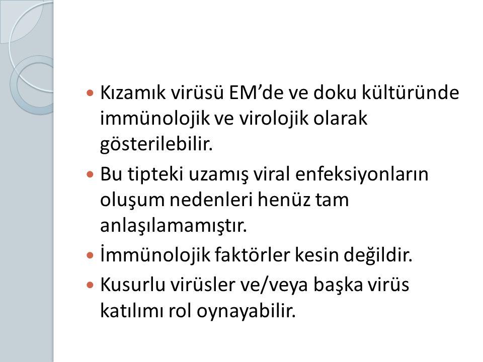 Kızamık virüsü EM'de ve doku kültüründe immünolojik ve virolojik olarak gösterilebilir. Bu tipteki uzamış viral enfeksiyonların oluşum nedenleri henüz