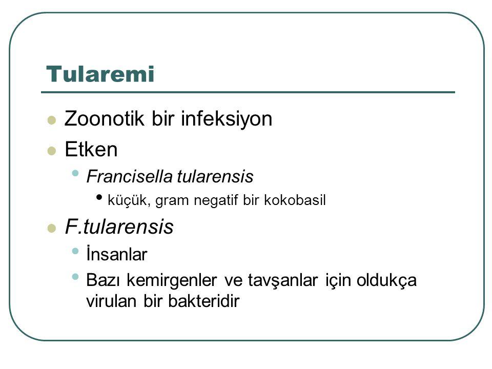 Tularemi Zoonotik bir infeksiyon Etken Francisella tularensis küçük, gram negatif bir kokobasil F.tularensis İnsanlar Bazı kemirgenler ve tavşanlar iç
