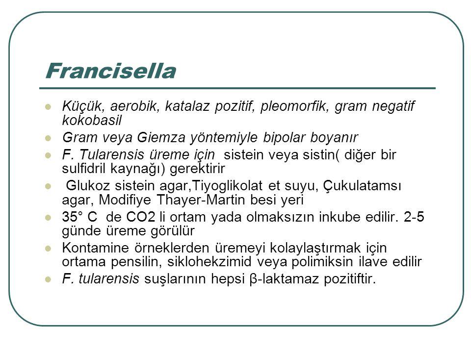 Francisella suşlarının özellikleri F.tularensisalttipler ÖzelliktularensisholarcticanovicidaF.philomiragia Üreme için sistein gereksinimi ++-- %6 NaCl ilave edilmiş et suyunda üreme --++ Haraketli---- Oksidaz---+ Nitrat redüksiyonu---- Asid oluşumu Glukozdan++++ Gliserol+-++ Jelatin hidrolizi---+ Virulans İnsanYüksekOrtadüşük TavşanYüksekdüşük Elde mevcut değil