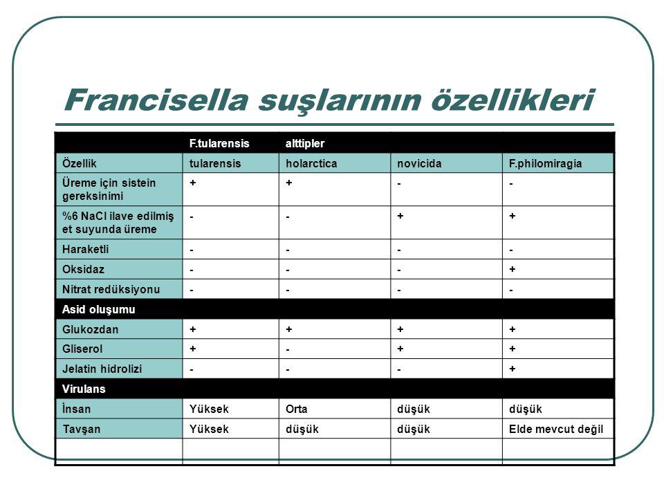 Francisella suşlarının özellikleri F.tularensisalttipler ÖzelliktularensisholarcticanovicidaF.philomiragia Üreme için sistein gereksinimi ++-- %6 NaCl