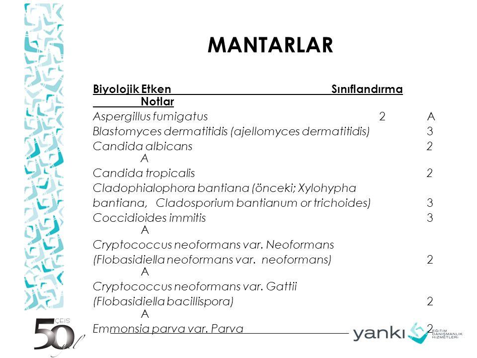 MANTARLAR Biyolojik Etken Sınıflandırma Notlar Aspergillus fumigatus2 A Blastomyces dermatitidis (ajellomyces dermatitidis)3 Candida albicans2 A Candi