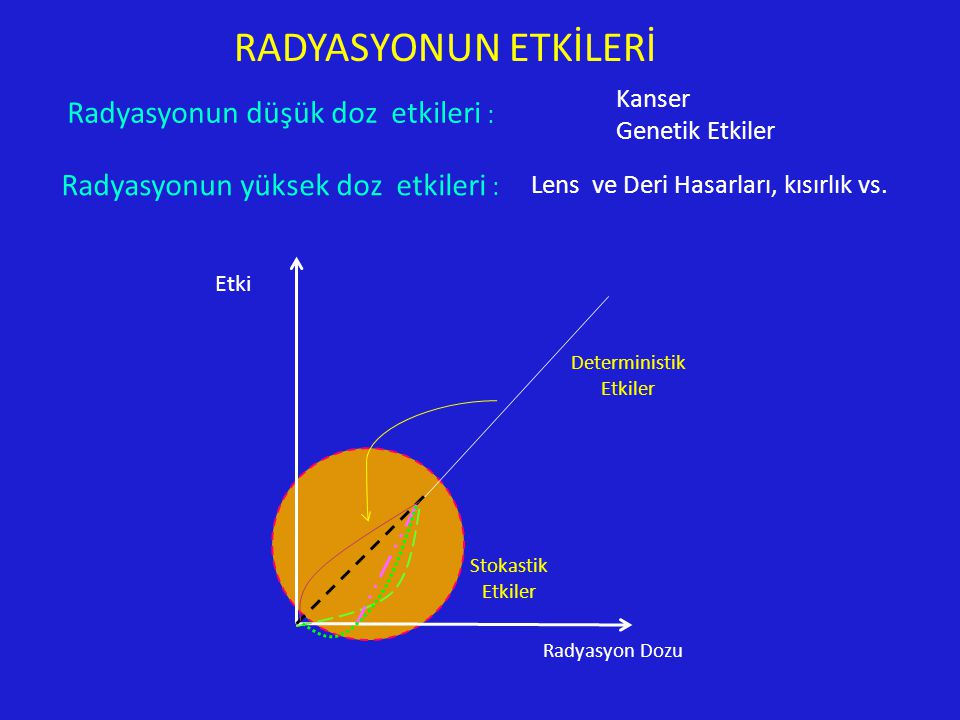 Kanser Genetik Etkiler Lens ve Deri Hasarları, kısırlık vs.