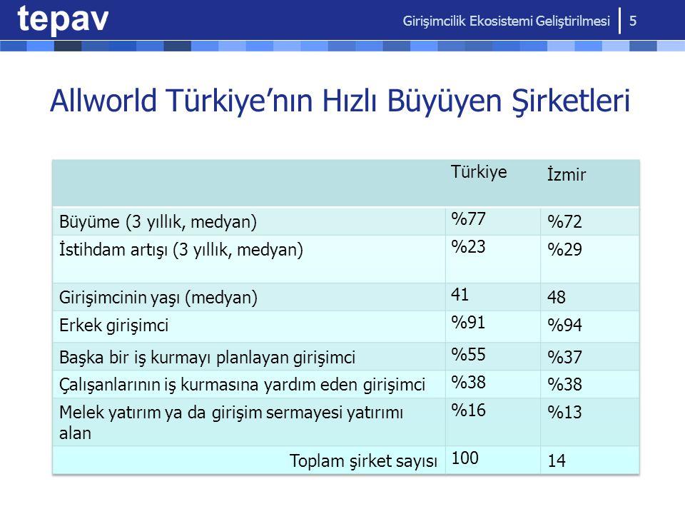 Allworld Türkiye'nın Hızlı Büyüyen Şirketleri Girişimcilik Ekosistemi Geliştirilmesi 5