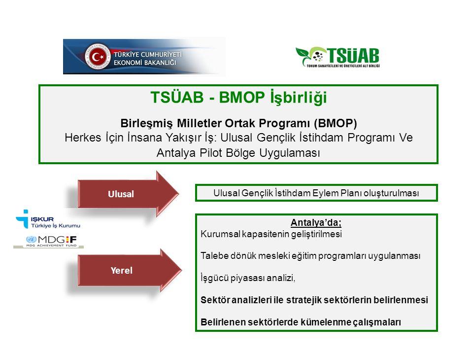 TSÜAB - BMOP İşbirliği Birleşmiş Milletler Ortak Programı (BMOP) Herkes İçin İnsana Yakışır İş: Ulusal Gençlik İstihdam Programı Ve Antalya Pilot Bölge Uygulaması Ulusal Ulusal Gençlik İstihdam Eylem Planı oluşturulması Yerel Antalya'da; Kurumsal kapasitenin geliştirilmesi Talebe dönük mesleki eğitim programları uygulanması İşgücü piyasası analizi, Sektör analizleri ile stratejik sektörlerin belirlenmesi Belirlenen sektörlerde kümelenme çalışmaları