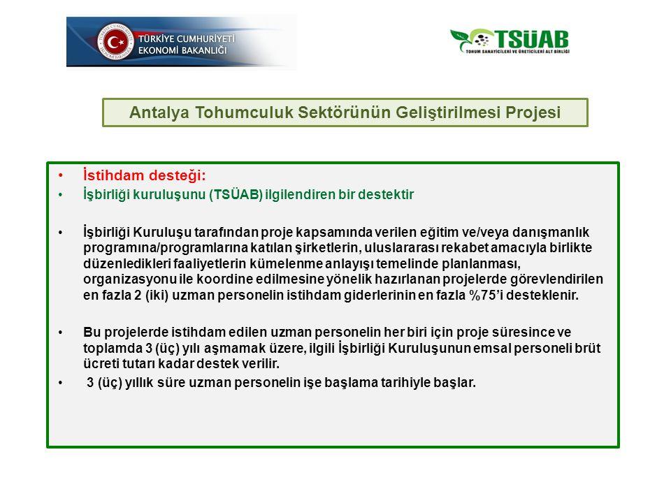 İstihdam desteği: İşbirliği kuruluşunu (TSÜAB) ilgilendiren bir destektir İşbirliği Kuruluşu tarafından proje kapsamında verilen eğitim ve/veya danışmanlık programına/programlarına katılan şirketlerin, uluslararası rekabet amacıyla birlikte düzenledikleri faaliyetlerin kümelenme anlayışı temelinde planlanması, organizasyonu ile koordine edilmesine yönelik hazırlanan projelerde görevlendirilen en fazla 2 (iki) uzman personelin istihdam giderlerinin en fazla %75'i desteklenir.