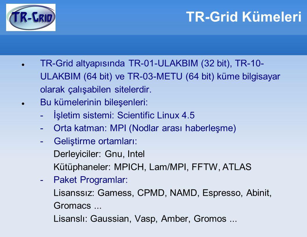 TR-Grid Kümeleri TR-Grid altyapısında TR-01-ULAKBIM (32 bit), TR-10- ULAKBIM (64 bit) ve TR-03-METU (64 bit) küme bilgisayar olarak çalışabilen sitelerdir.