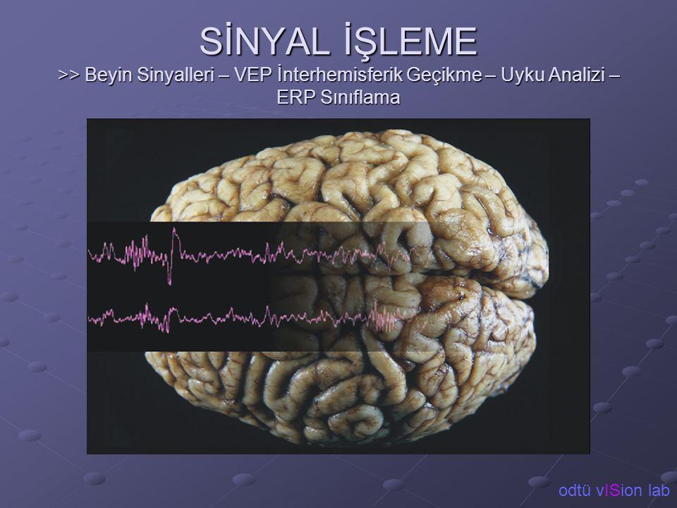 SİNYAL İŞLEME >> Beyin Sinyalleri – VEP İnterhemisferik Geçikme – Uyku Analizi – ERP Sınıflama odtü vISion lab