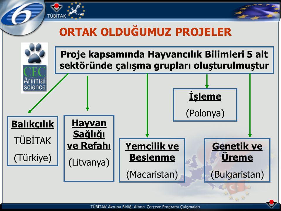 ORTAK OLDUĞUMUZ PROJELER Proje kapsamında Hayvancılık Bilimleri 5 alt sektöründe çalışma grupları oluşturulmuştur Balıkçılık TÜBİTAK (Türkiye) Hayvan Sağlığı ve Refahı (Litvanya) Yemcilik ve Beslenme (Macaristan) İşleme (Polonya) Genetik ve Üreme (Bulgaristan)