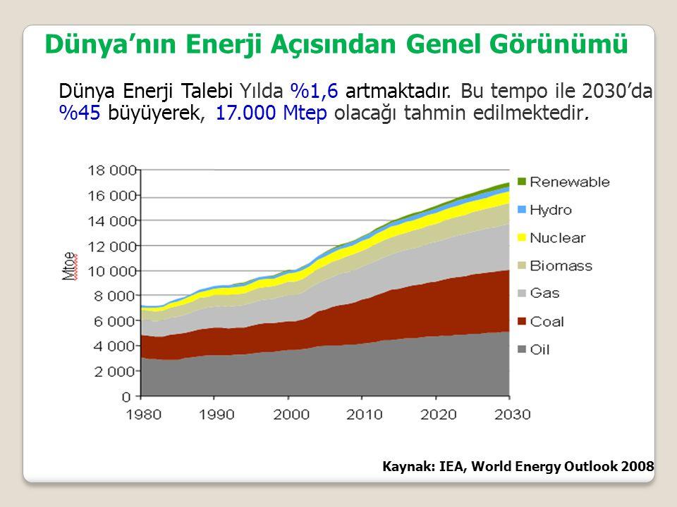 Dünya Enerji Talebi Yılda %1,6 artmaktadır.