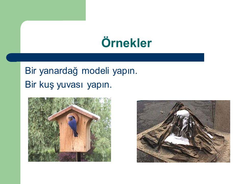 Bir yanardağ modeli yapın. Bir kuş yuvası yapın. Örnekler