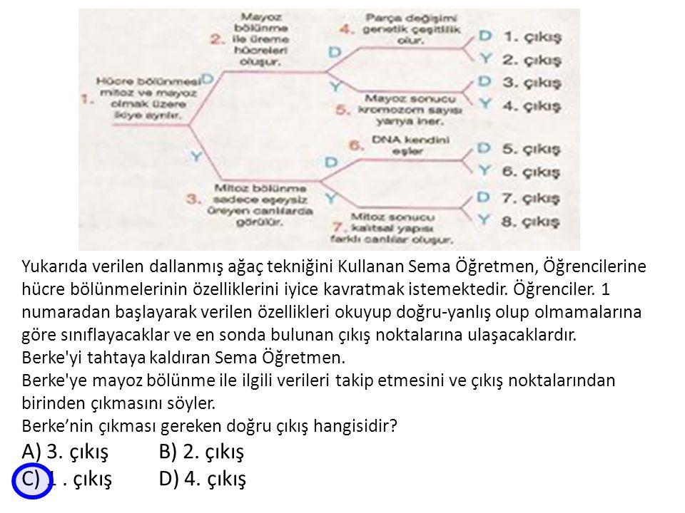 Yukarıda verilen dallanmış ağaç tekniğini Kullanan Sema Öğretmen, Öğrencilerine hücre bölünmelerinin özelliklerini iyice kavratmak istemektedir.