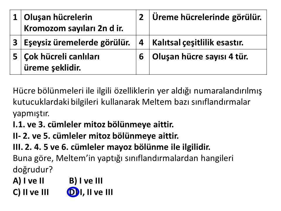 Hücre bölünmeleri ile ilgili özelliklerin yer aldığı numaralandırılmış kutucuklardaki bilgileri kullanarak Meltem bazı sınıflandırmalar yapmıştır. I.1