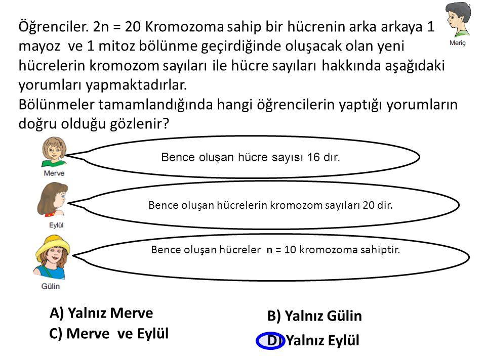 Öğrenciler. 2n = 20 Kromozoma sahip bir hücrenin arka arkaya 1 mayoz ve 1 mitoz bölünme geçirdiğinde oluşacak olan yeni hücrelerin kromozom sayıları i