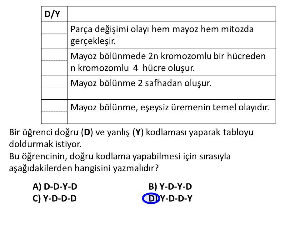 D/Y Parça değişimi olayı hem mayoz hem mitozda gerçekleşir. Mayoz bölünmede 2n kromozomlu bir hücreden n kromozomlu 4 hücre oluşur. Mayoz bölünme 2 sa