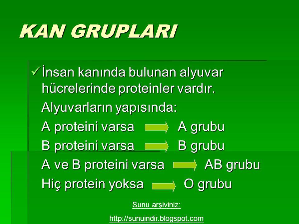 KAN GRUPLARI İnsan kanında bulunan alyuvar hücrelerinde proteinler vardır. İnsan kanında bulunan alyuvar hücrelerinde proteinler vardır. Alyuvarların