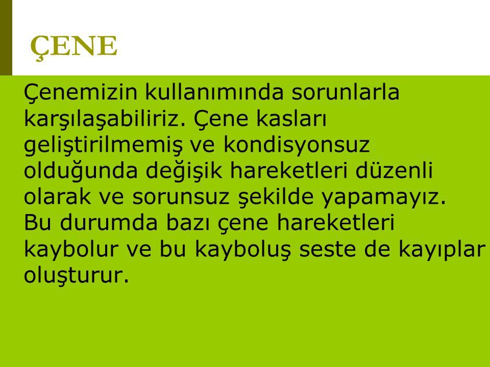 www.turkceciler.com Çenemizin kullanımında sorunlarla karşılaşabiliriz. Çene kasları geliştirilmemiş ve kondisyonsuz olduğunda değişik hareketleri düz