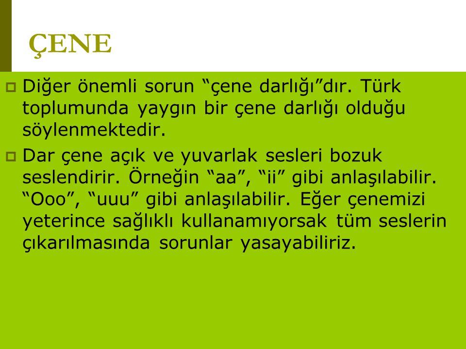 """www.turkceciler.com  Diğer önemli sorun """"çene darlığı""""dır. Türk toplumunda yaygın bir çene darlığı olduğu söylenmektedir.  Dar çene açık ve yuvarlak"""