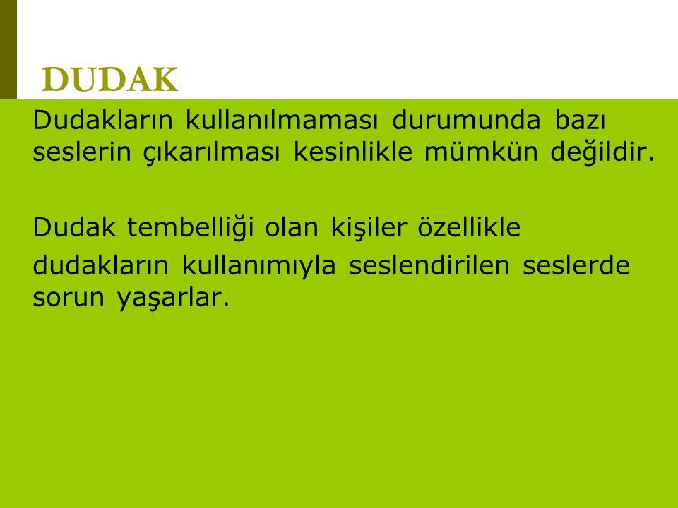 www.turkceciler.com DUDAK Dudakların kullanılmaması durumunda bazı seslerin çıkarılması kesinlikle mümkün değildir. Dudak tembelliği olan kişiler özel