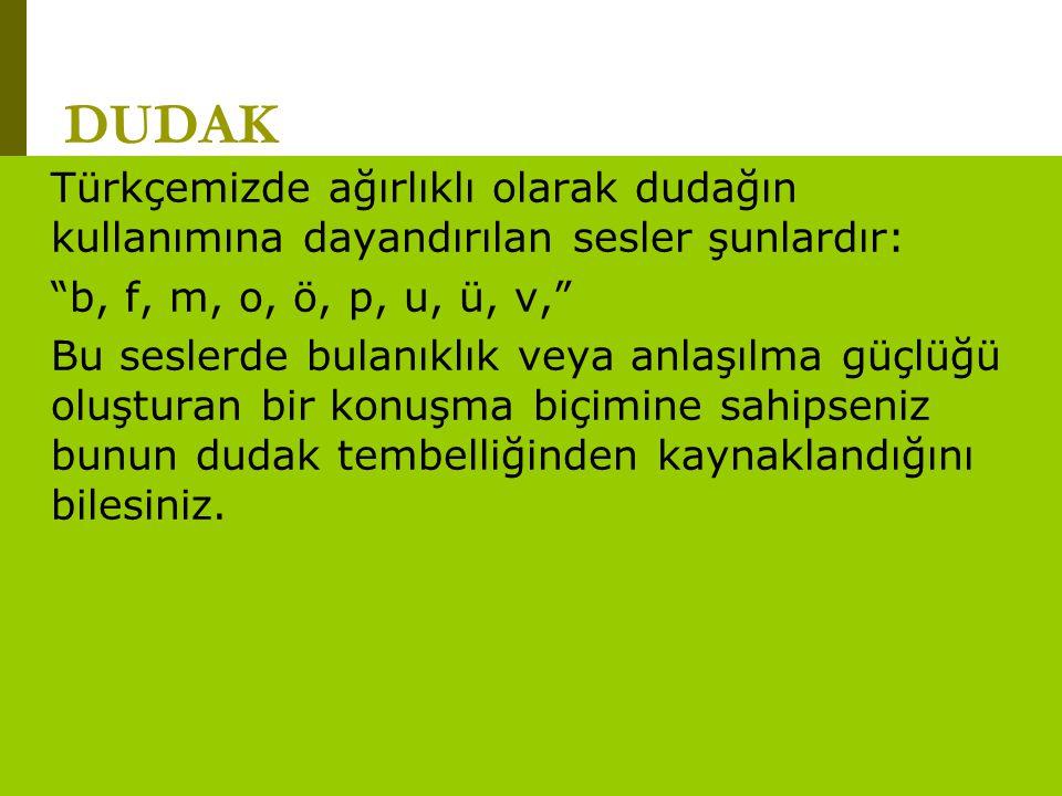"""www.turkceciler.com DUDAK Türkçemizde ağırlıklı olarak dudağın kullanımına dayandırılan sesler şunlardır: """"b, f, m, o, ö, p, u, ü, v,"""" Bu seslerde bul"""