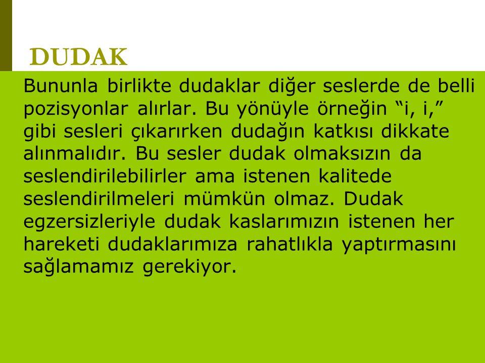"""www.turkceciler.com DUDAK Bununla birlikte dudaklar diğer seslerde de belli pozisyonlar alırlar. Bu yönüyle örneğin """"i, i,"""" gibi sesleri çıkarırken du"""