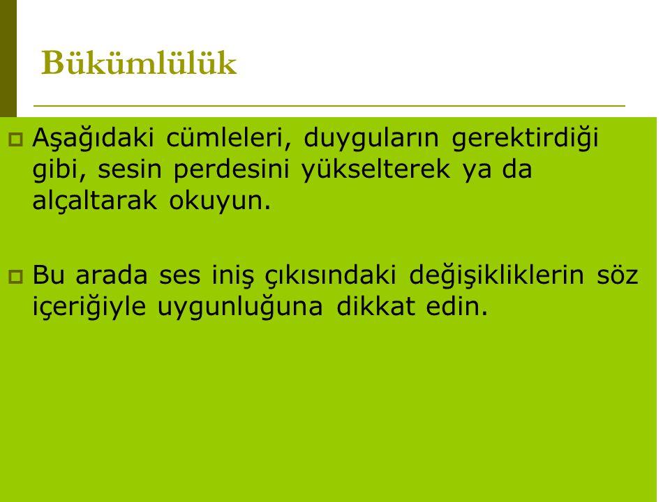 www.turkceciler.com  Aşağıdaki cümleleri, duyguların gerektirdiği gibi, sesin perdesini yükselterek ya da alçaltarak okuyun.  Bu arada ses iniş çıkı