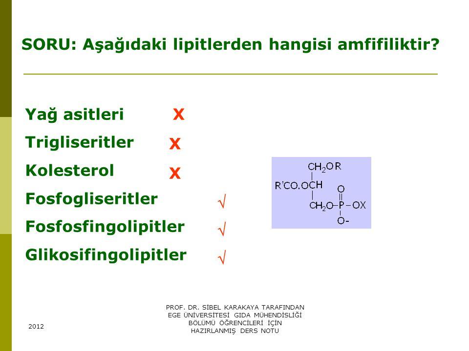 SORU: Aşağıdaki lipitlerden hangisi amfifiliktir? Yağ asitleri Trigliseritler Kolesterol Fosfogliseritler Fosfosfingolipitler Glikosifingolipitler X X