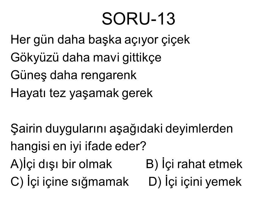 SORU-13 Her gün daha başka açıyor çiçek Gökyüzü daha mavi gittikçe Güneş daha rengarenk Hayatı tez yaşamak gerek Şairin duygularını aşağıdaki deyimler