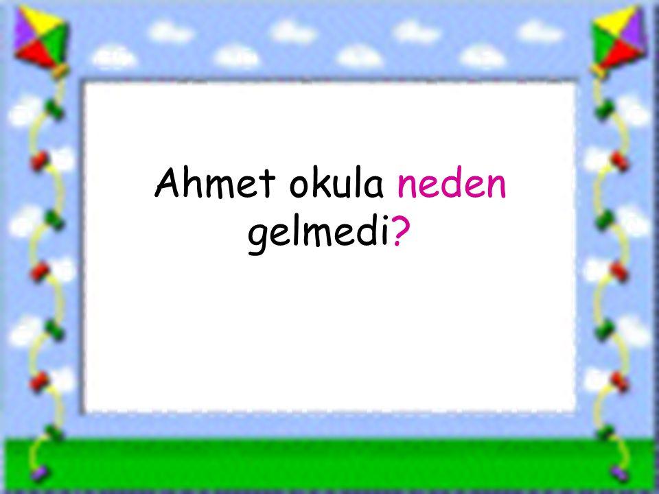 www.sorubak.com Ahmet okula neden gelmedi?