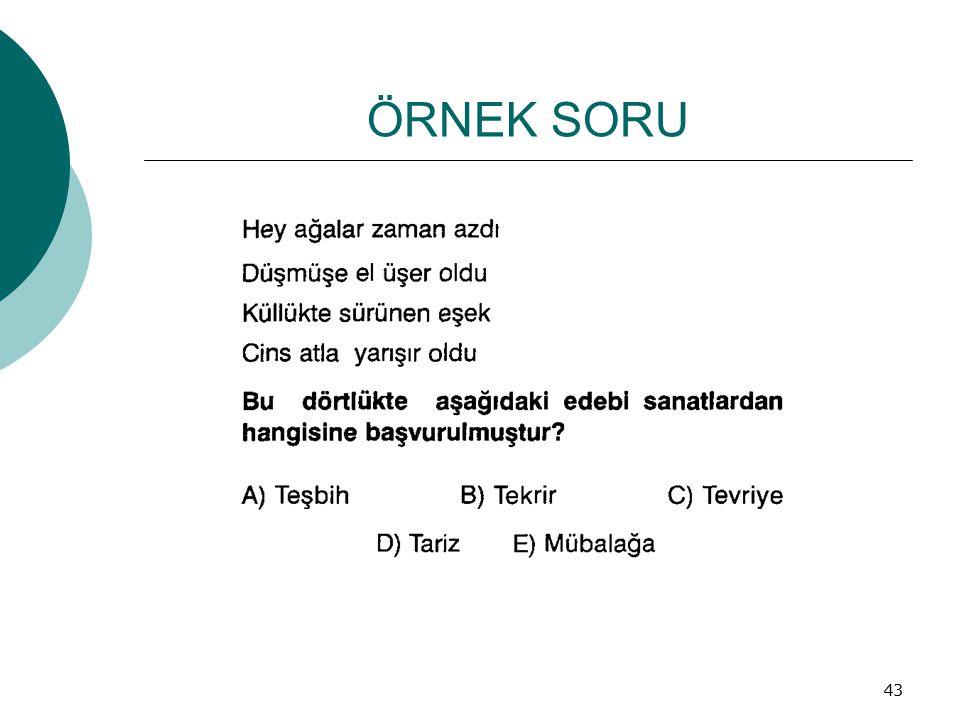 ÖRNEK SORU 43