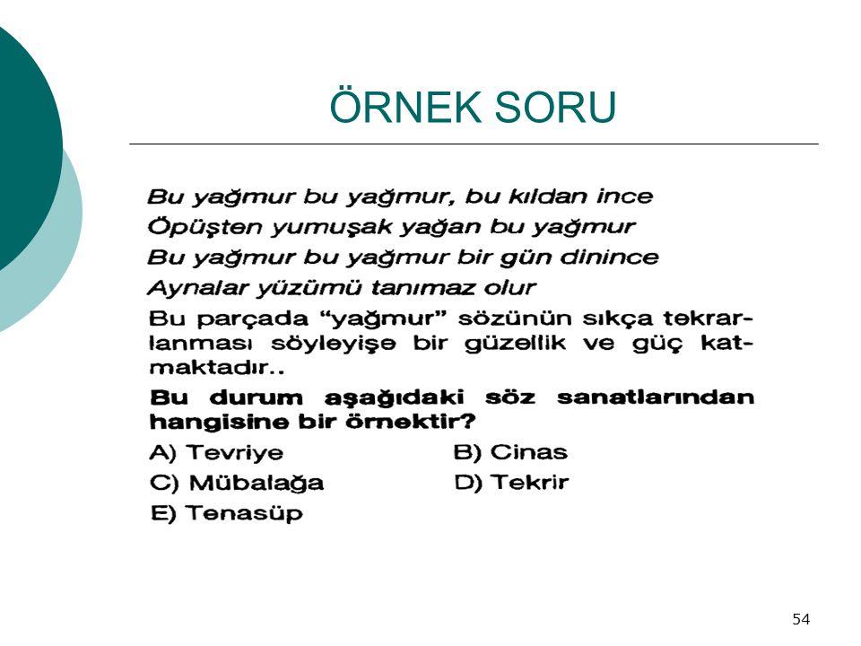 ÖRNEK SORU 54