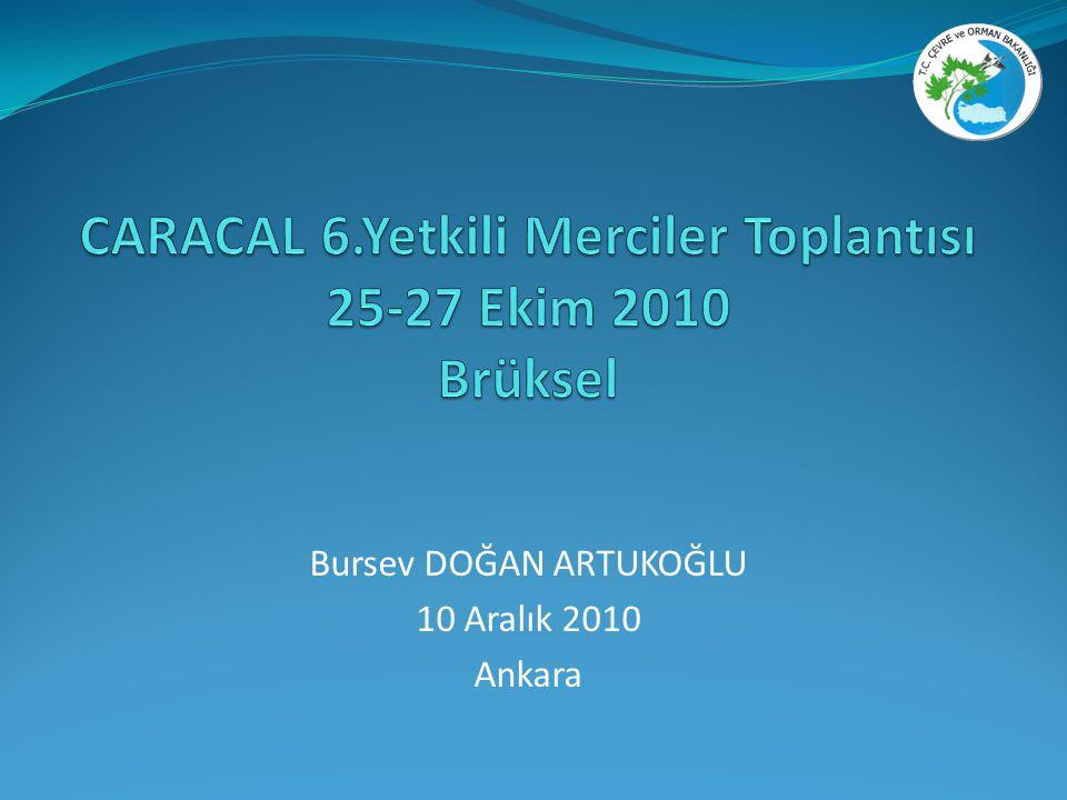 Bursev DOĞAN ARTUKOĞLU 10 Aralık 2010 Ankara