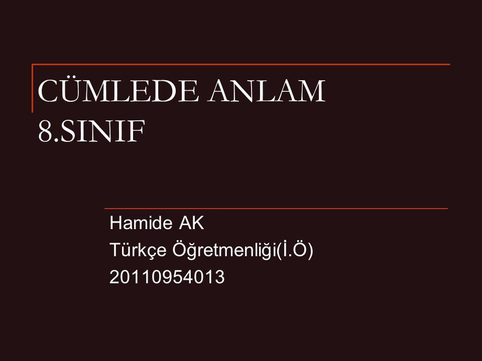 CÜMLEDE ANLAM 8.SINIF Hamide AK Türkçe Öğretmenliği(İ.Ö) 20110954013