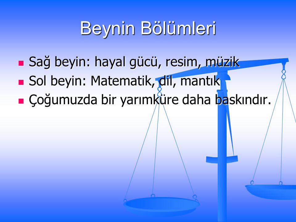 Okuldayken hangi dersleri severdiniz? a) Türkçe, Resim, Sosyal vb. b) Fenle ilgili olanları