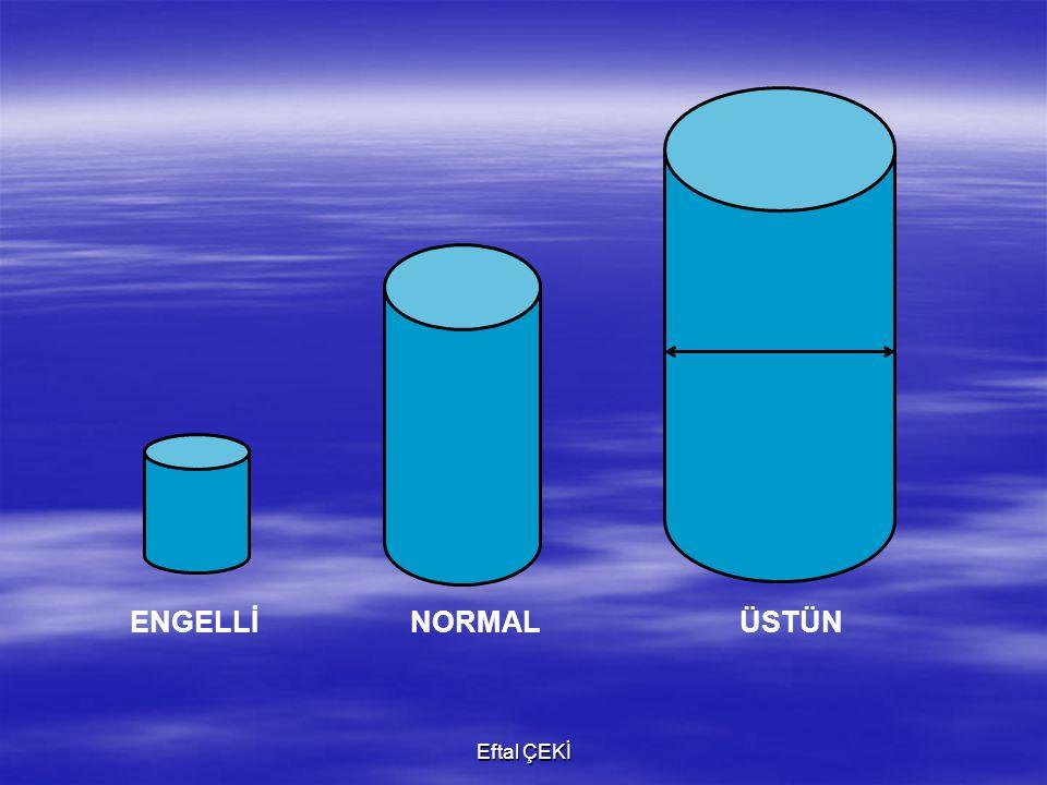Eftal ÇEKİ 1- Gelişimin tüm alanlarında yaşıtlarının ilerisindedirler.