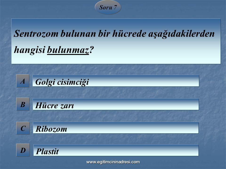 Soru 7 A B C D Sentrozom bulunan bir hücrede aşağıdakilerden hangisi bulunmaz? Golgi cisimciği Hücre zarı Ribozom Plastit www.egitimcininadresi.com