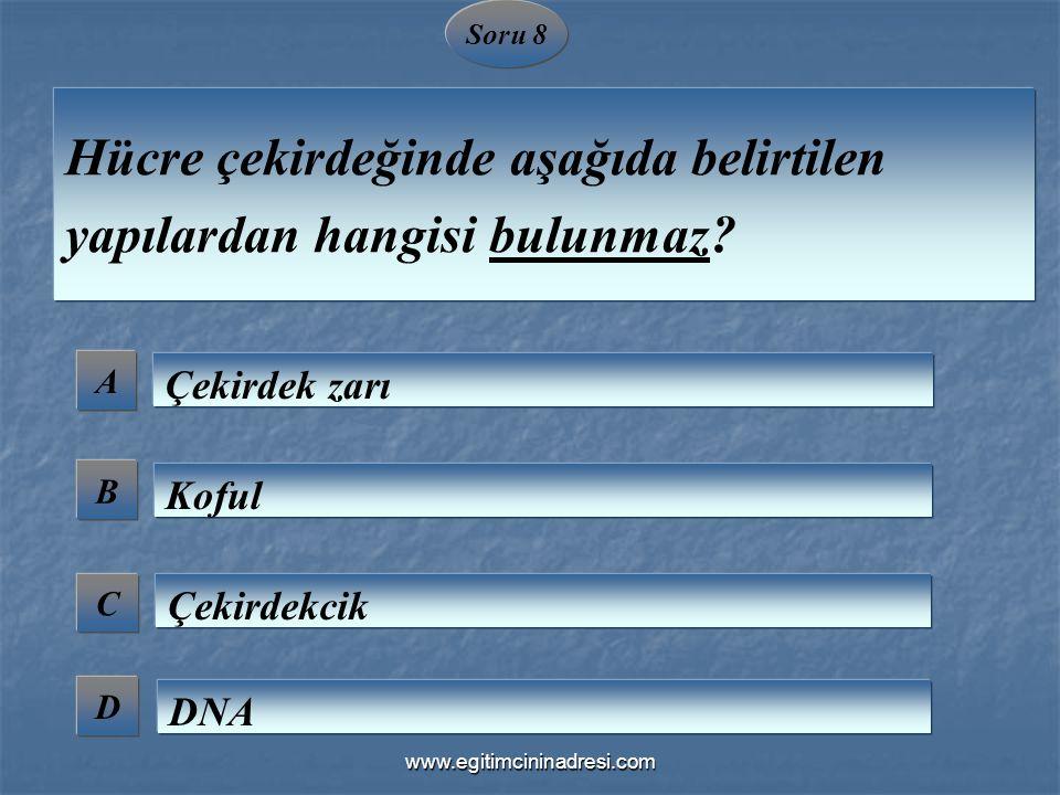 Soru 8 A B C D Hücre çekirdeğinde aşağıda belirtilen yapılardan hangisi bulunmaz? Çekirdek zarı Koful Çekirdekcik DNA www.egitimcininadresi.com