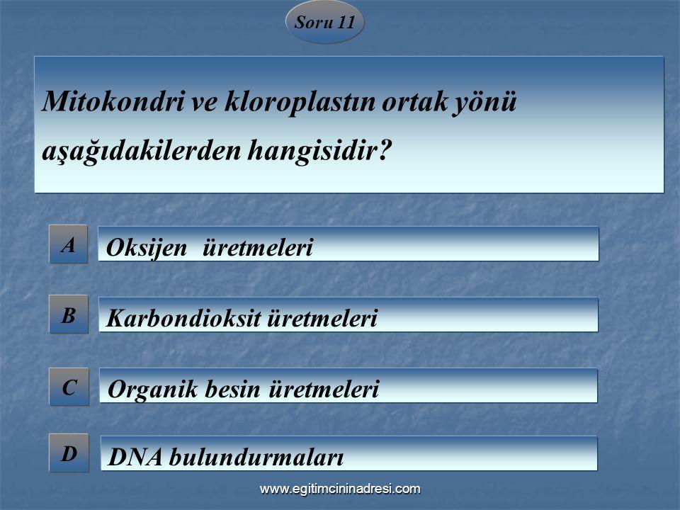 Soru 11 A B C D Mitokondri ve kloroplastın ortak yönü aşağıdakilerden hangisidir? Oksijen üretmeleri Karbondioksit üretmeleri Organik besin üretmeleri