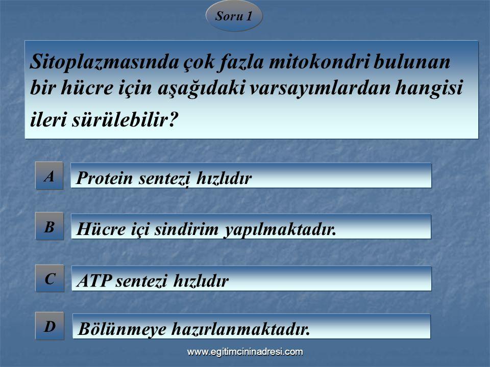 A B C D Soru 1 Sitoplazmasında çok fazla mitokondri bulunan bir hücre için aşağıdaki varsayımlardan hangisi ileri sürülebilir? Protein sentezi hızlıdı