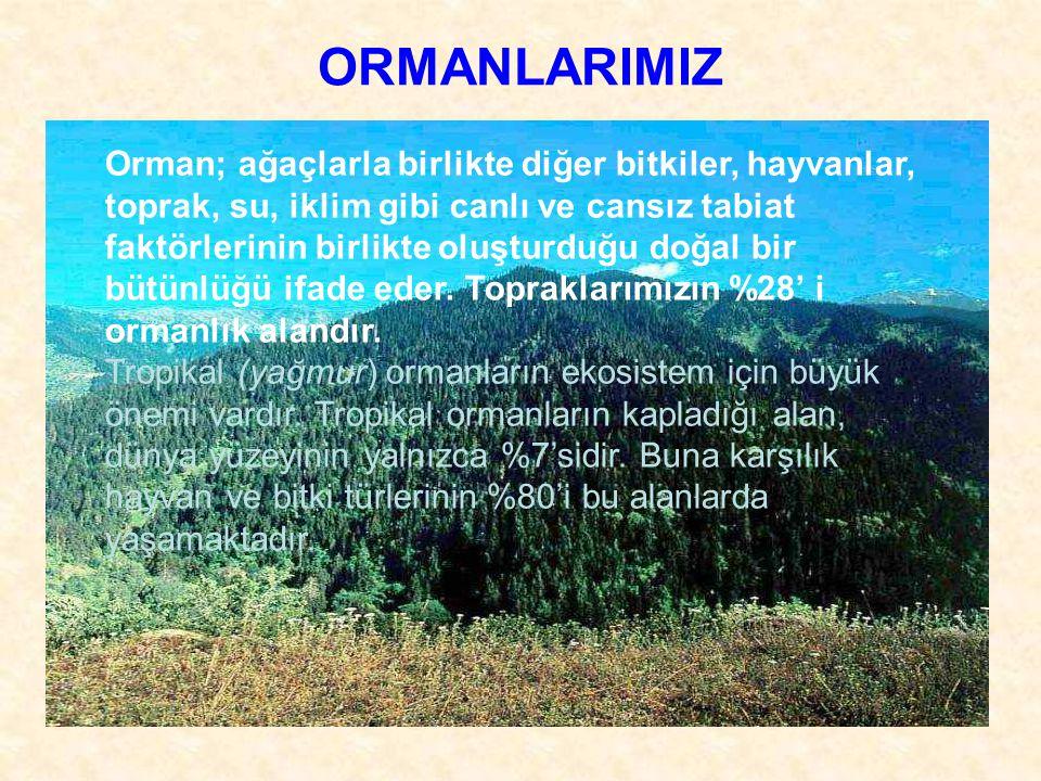 ORMANLARIMIZ Orman; ağaçlarla birlikte diğer bitkiler, hayvanlar, toprak, su, iklim gibi canlı ve cansız tabiat faktörlerinin birlikte oluşturduğu doğal bir bütünlüğü ifade eder.