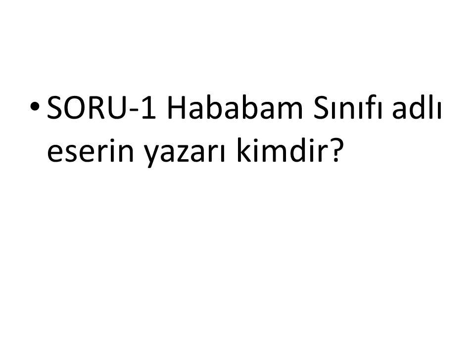 SORU-1 Hababam Sınıfı adlı eserin yazarı kimdir?
