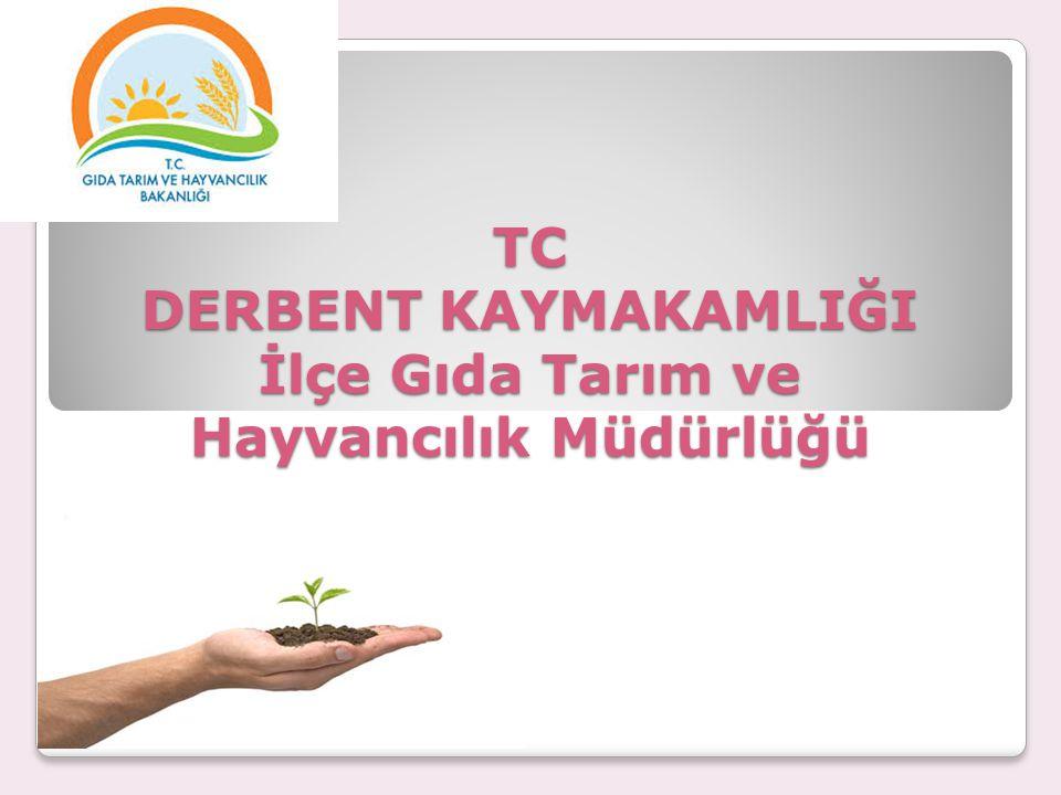 TC DERBENT KAYMAKAMLIĞI İlçe Gıda Tarım ve Hayvancılık Müdürlüğü