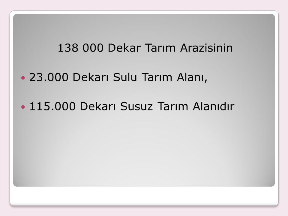 138 000 Dekar Tarım Arazisinin 23.000 Dekarı Sulu Tarım Alanı, 115.000 Dekarı Susuz Tarım Alanıdır