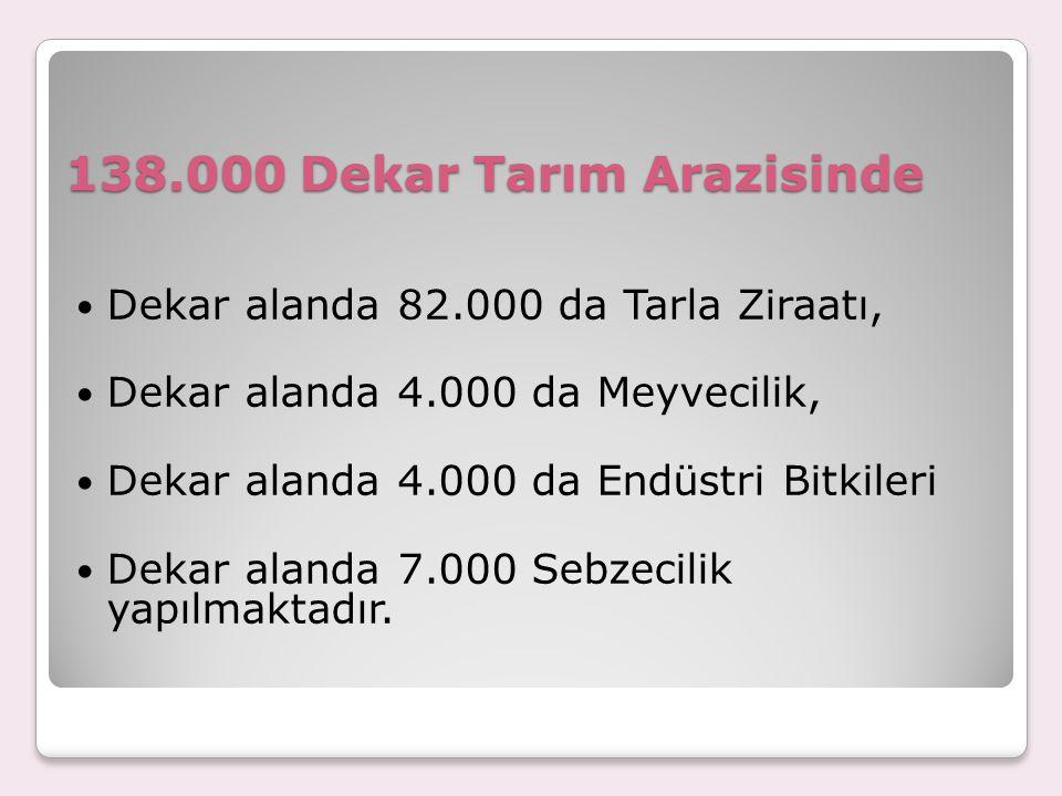 138.000 Dekar Tarım Arazisinde Dekar alanda 82.000 da Tarla Ziraatı, Dekar alanda 4.000 da Meyvecilik, Dekar alanda 4.000 da Endüstri Bitkileri Dekar